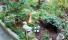Сочи Гостевой Дом Марта в Хосте resorts-hotels.org -010752
