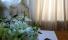 Стандартный Гостевой Номер - Краснодар Отель Престиж resorts-hotels.org -161013