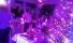 Организация свадеб.Гостиница РоЯлта. Алупка Крым. resorts-hotels-31